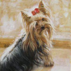 Portret Bianko - York