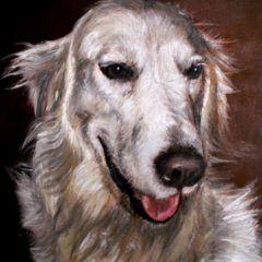 Portret Goldi