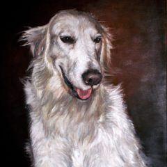 Portret Goldie 50x60cm