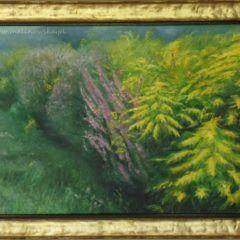 Sierpniowa łąka, obraz olejny napłótnie
